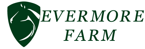 Evermore Farm | Equestrian Facility in Brooklet, GA | Boarding | Lessons