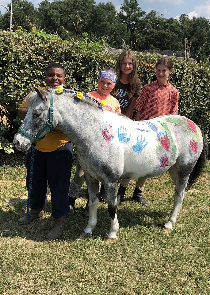 Horseback Riding Lessons | Evermore Farm Brooklet, GA